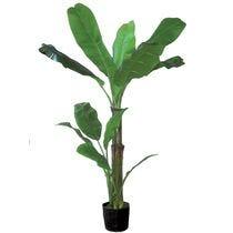Décoration florale et plantes