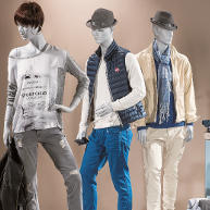 Collection Grey Line