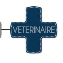 Croix de vétérinaire