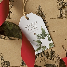 Etiquettes cadeaux de Noël et plumes