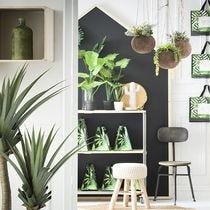 d coration de vitrine printemps p turage retif france. Black Bedroom Furniture Sets. Home Design Ideas