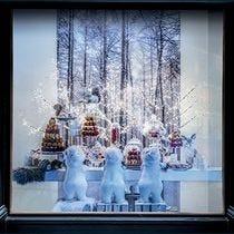 Kit vitrine Noël Festin des ours