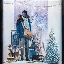 Kit vitrine Noël Forêt enchantée