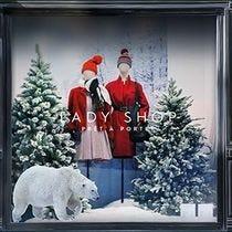 Kit vitrine Noël Froid polaire XXL
