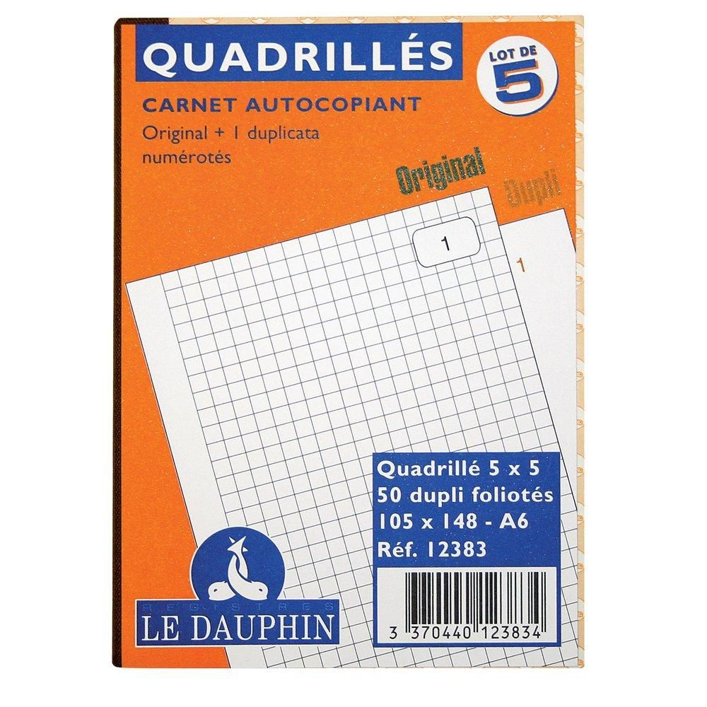 Manifolds quadrillés dupli 105 x 148 mm - par 5
