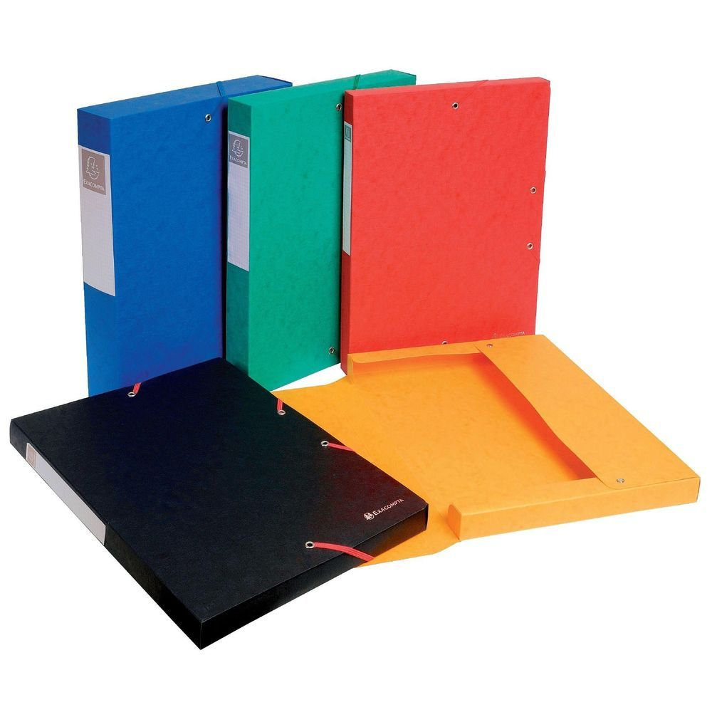 Boîte de classement Easy box - dos 60 mm - 1 pièce (photo)