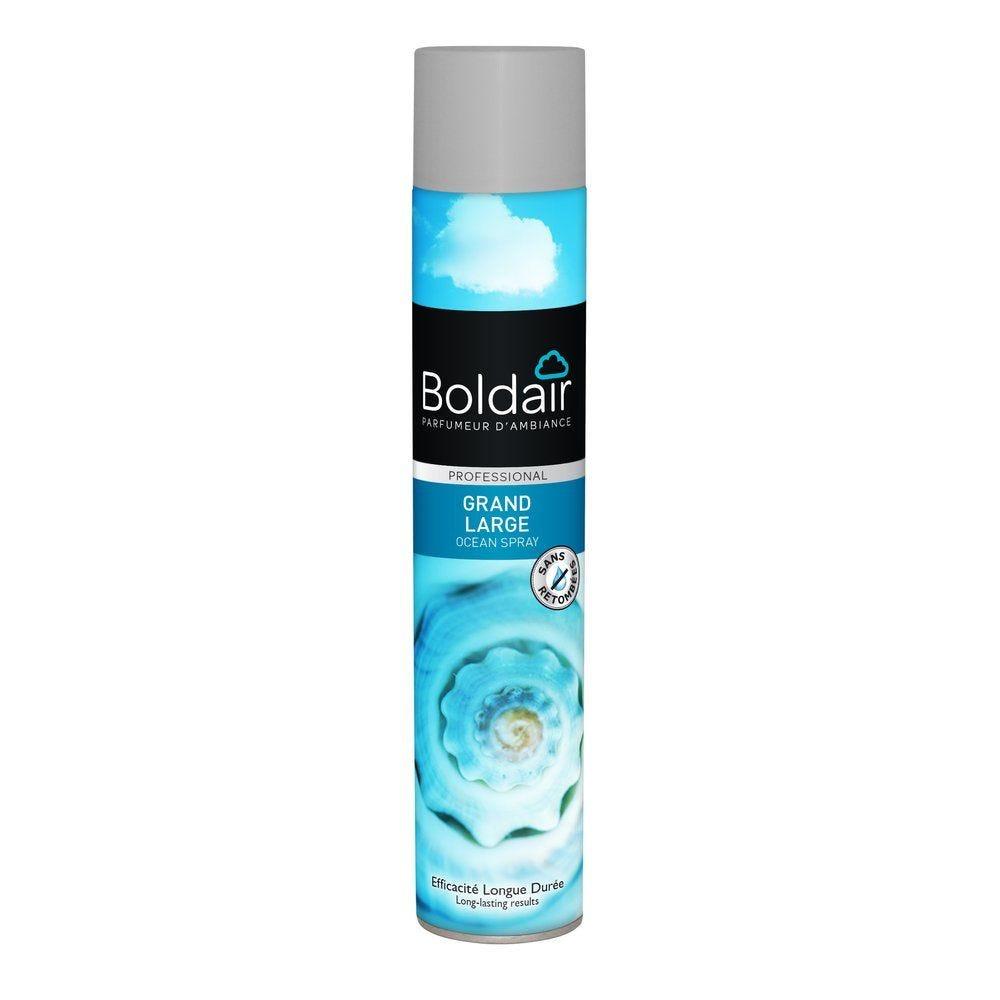 Boldair desodorisant grand large 500 ml (photo)