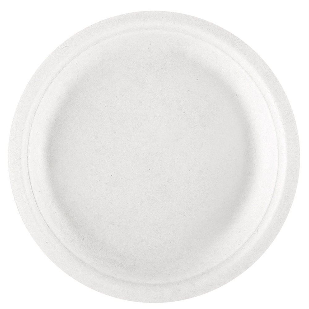 Assiette bagasse blanche D18x1,8cm - par 1000 (photo)