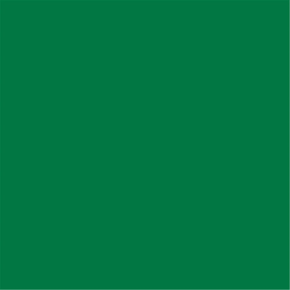 Serviette intissé vert sapin 40x40cm - par 700