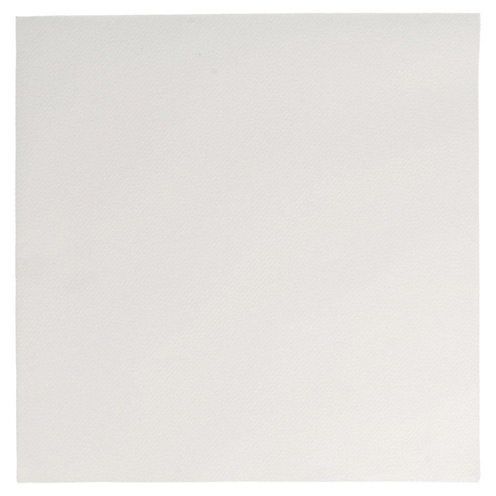 Serviette intissé blanc 45x45cm - par 700