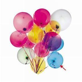 Ballons bleus unis par 100 (photo)