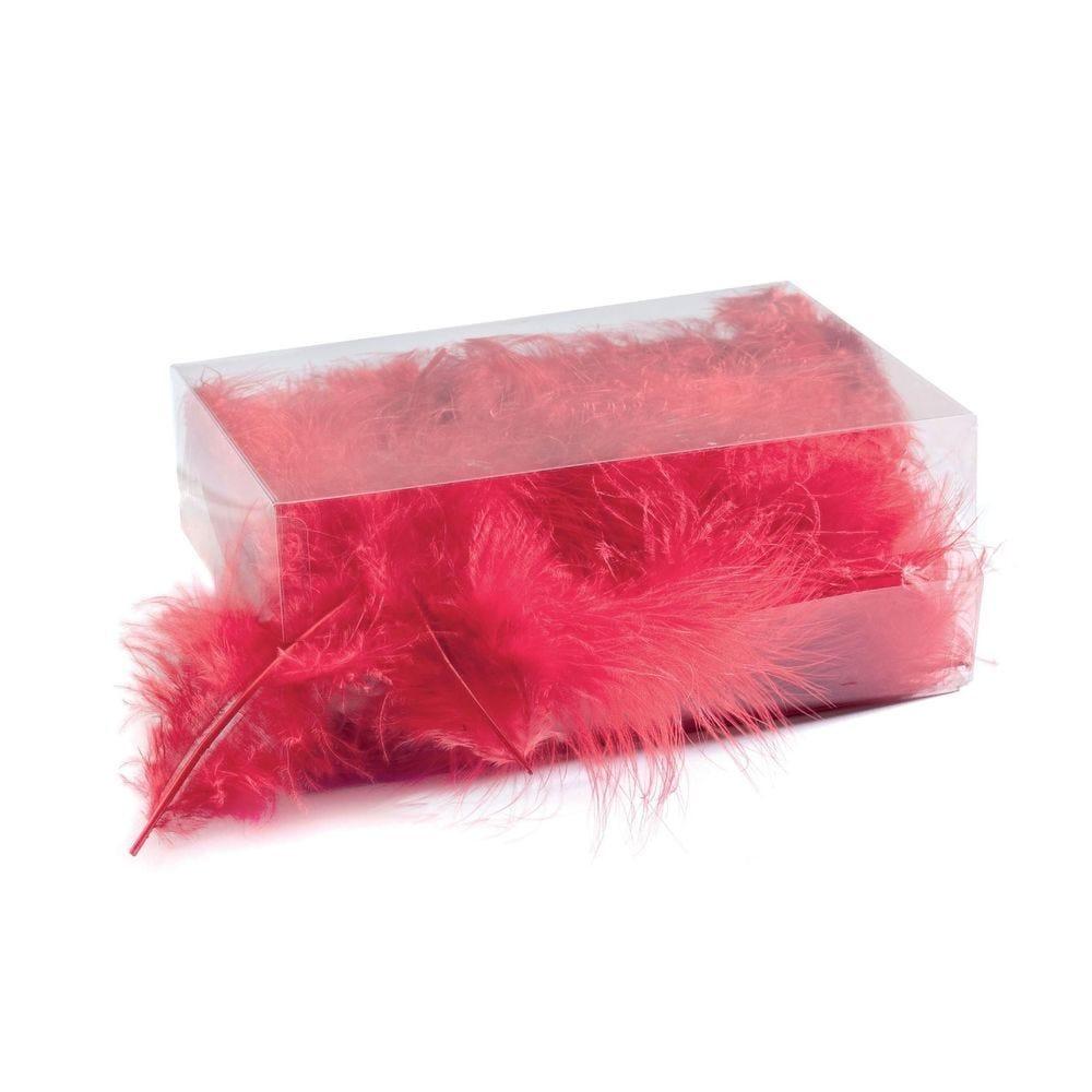 Boîte de plumes rouges- environ 6 gr (photo)