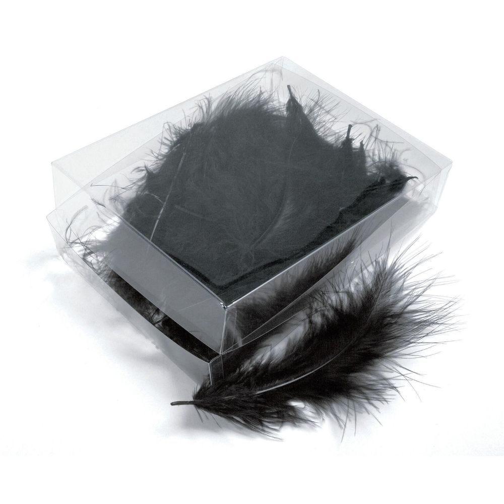 Boîte de plumes noires - +/- 6 gr (photo)