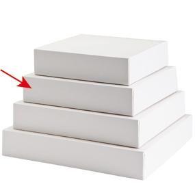 Boîte patissière carton blanc 23x5cm - par 50 (photo)