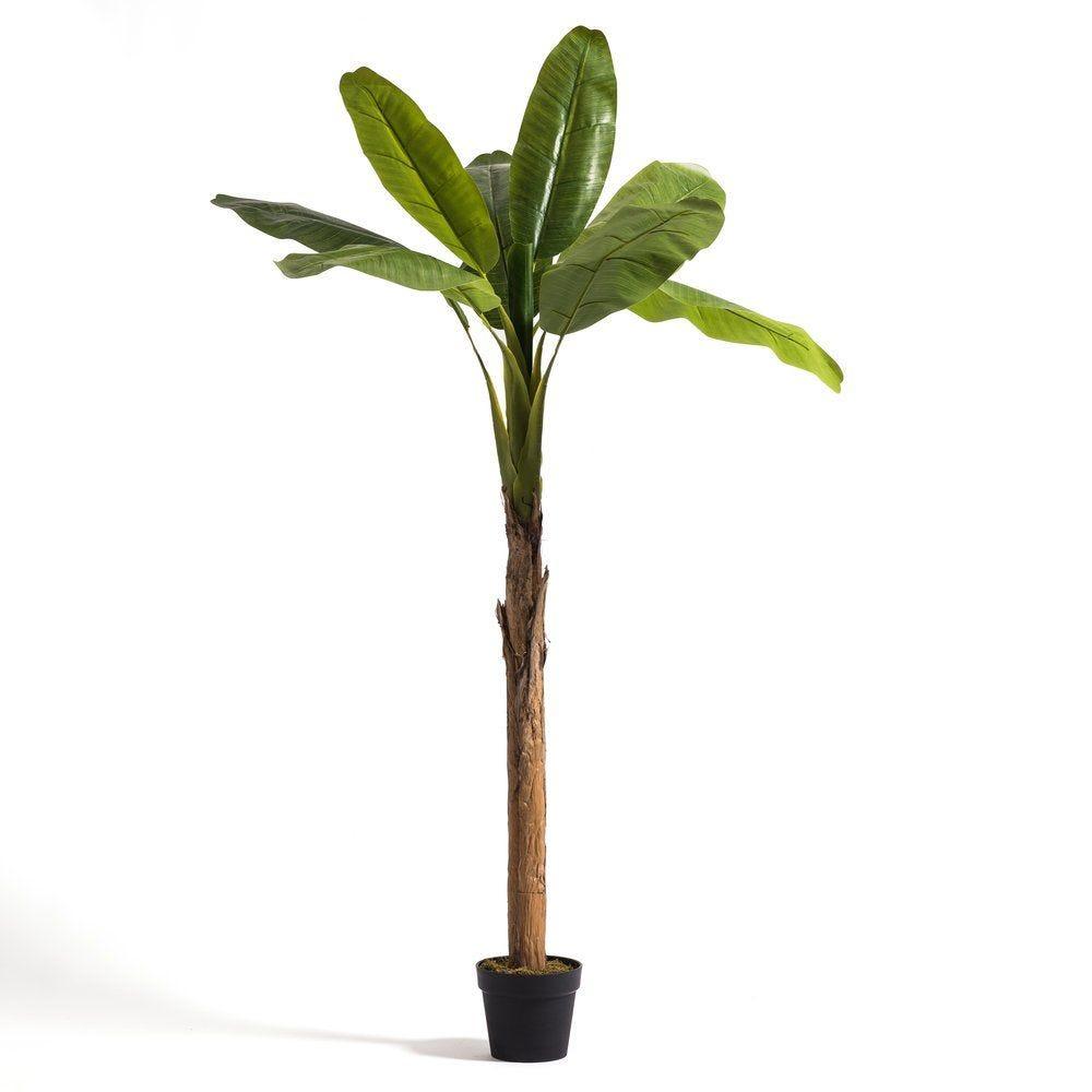 Bananier artificiel dans pot H 200 cm (photo)