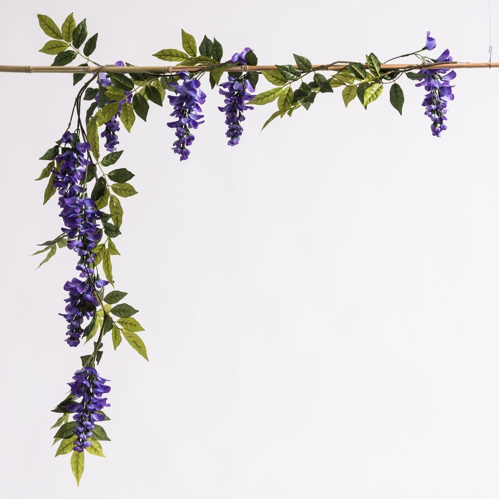 Guirlande de glycines violettes L 150 cm