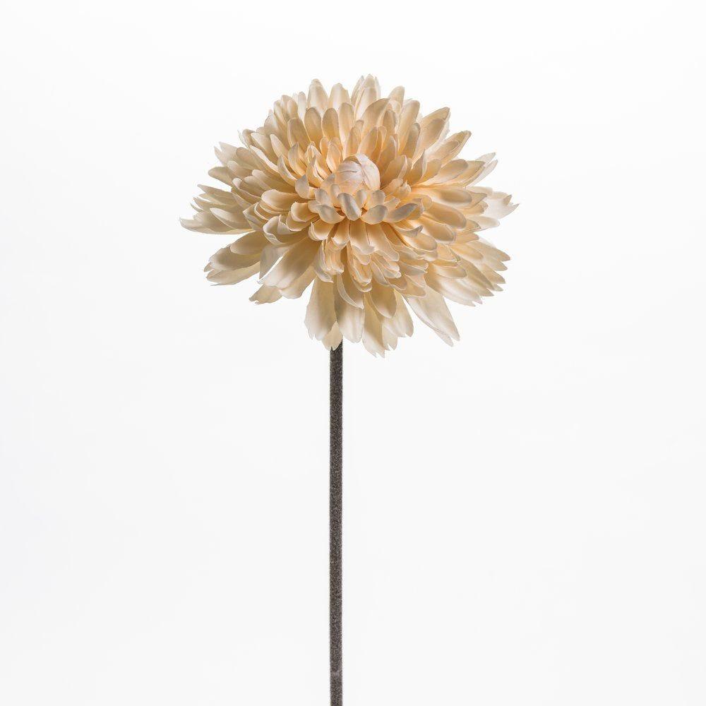 Chrysanthème blanc D 20 x H 54 cm (photo)