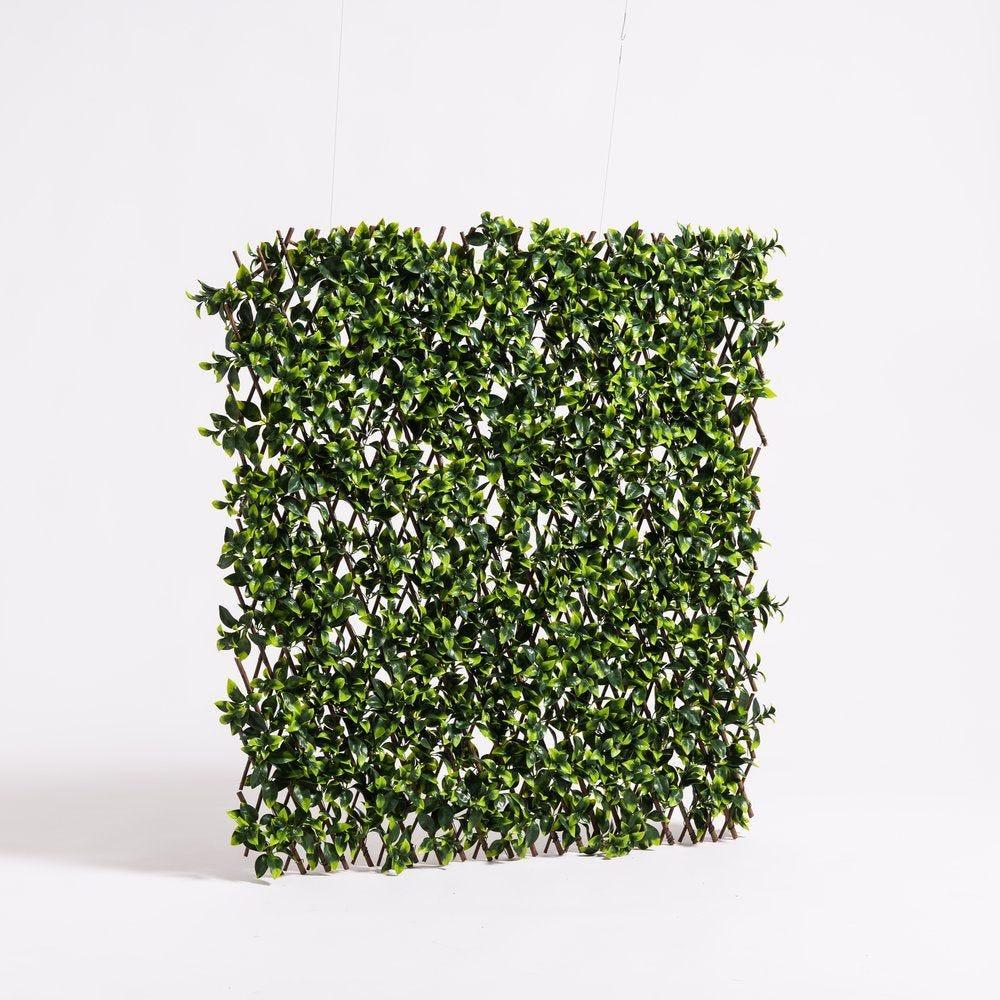 Panneau de feuilles extensible L 90 x H 180 cm (photo)