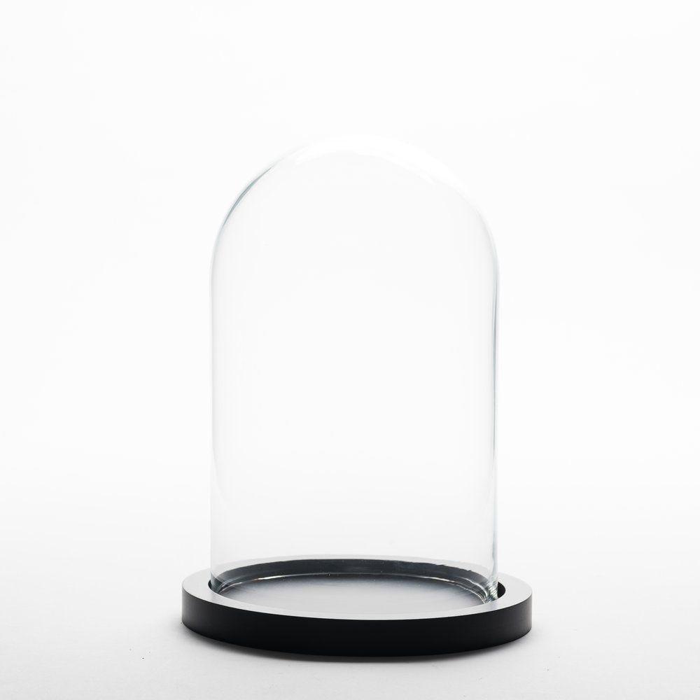 Cloche en verre sur socle en bois Ø 23 x H 30 cm (photo)