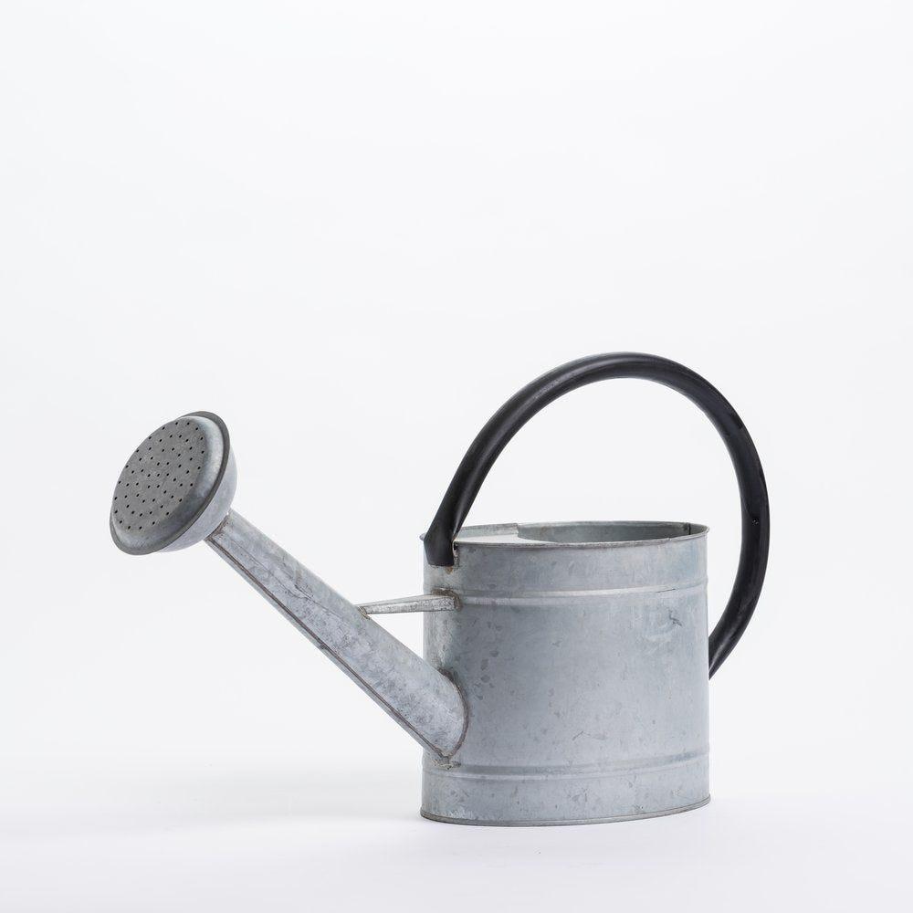 Arrosoir en zinc L 15 x P 31 x H 55cm (photo)