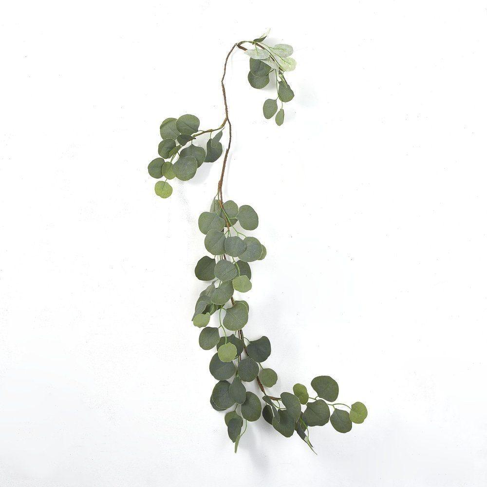 Guirlande de feuilles d'eucalyptus vertes L 120 cm