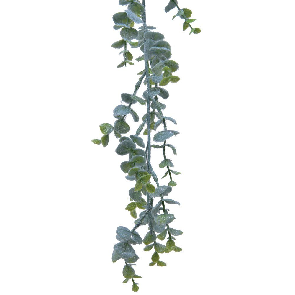 Guirlande d'eucalyptus vert givré L 180 cm