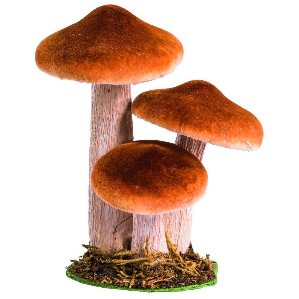 Champignon H.12 à 16cm 3 modèles possibles (photo)