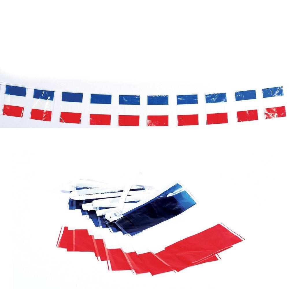 Guirlande de fanions France en plastique L.4m (photo)