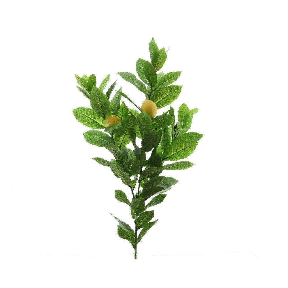 Branche citronnier avec fruits L.80 cm (photo)