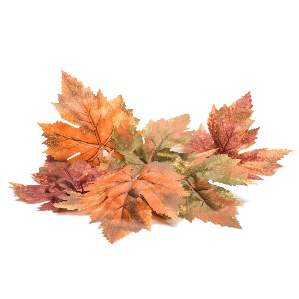 Feuilles d'automne assorties - sachet de 8 (photo)