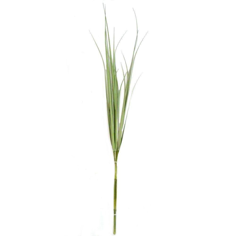 Tige herbe verte L.150cm (photo)