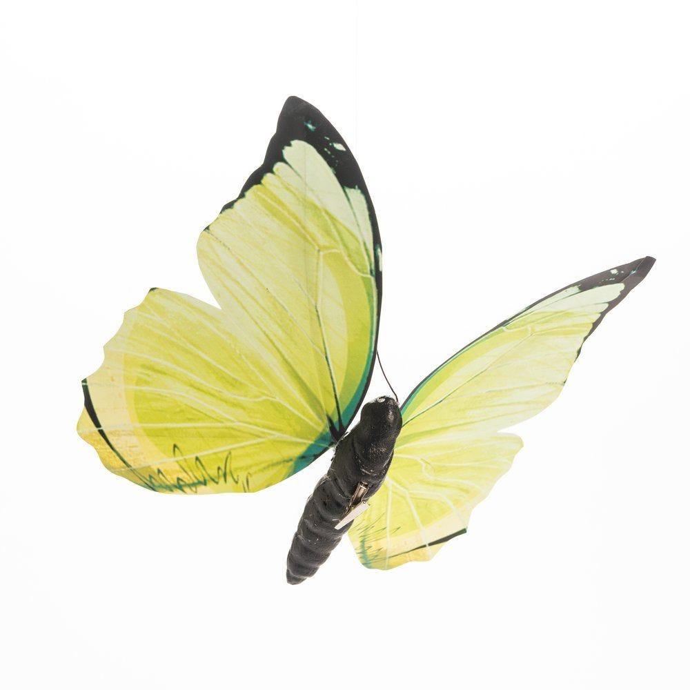 Papillon vert avec clip en 23.5x26.5cm (photo)