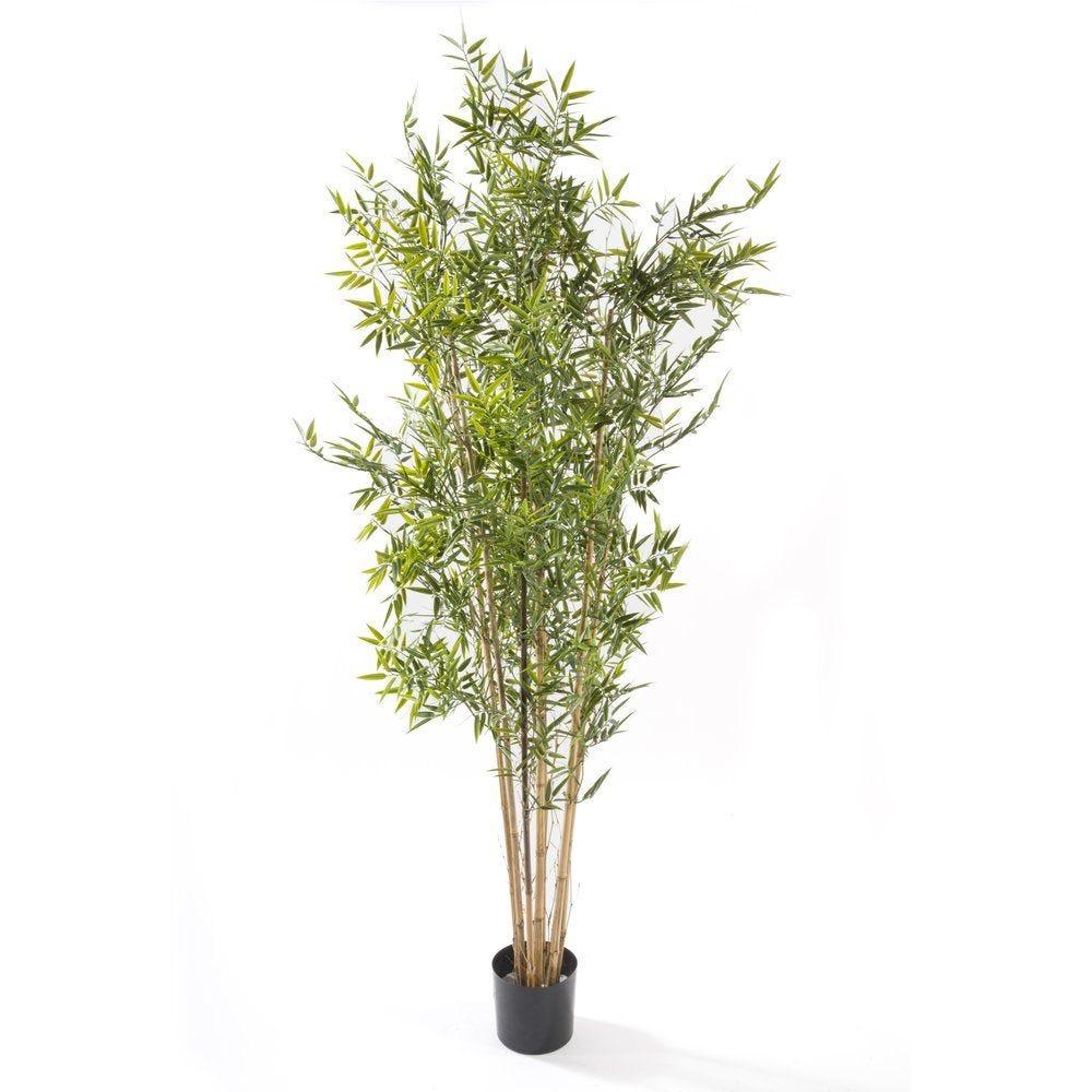 Arbre bambou japonais vert plastique 180cm par 1 (photo)