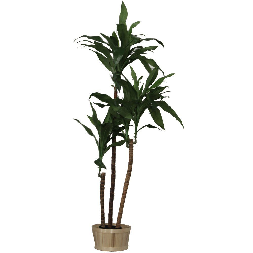 Arbre dracaena vert polyester dans pot 90cm par 1 (photo)