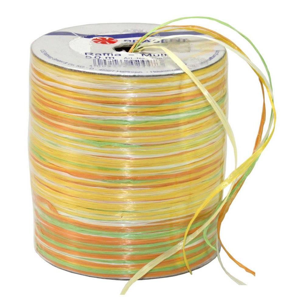 Bolduc raphia multicolore 5 couleurs - 50 m - bobine n°9 (photo)