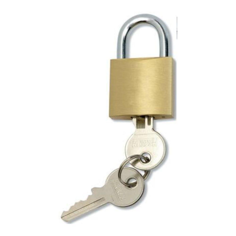 Cadenas 2 clés pour vestiaires - 40 x 30 - Anse diam 6mm (photo)