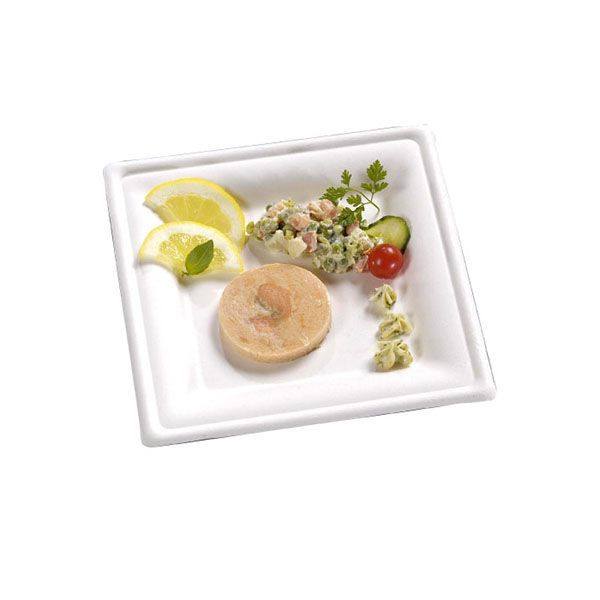 Assiette carrée en pulpe 20 cm - par 50 (photo)