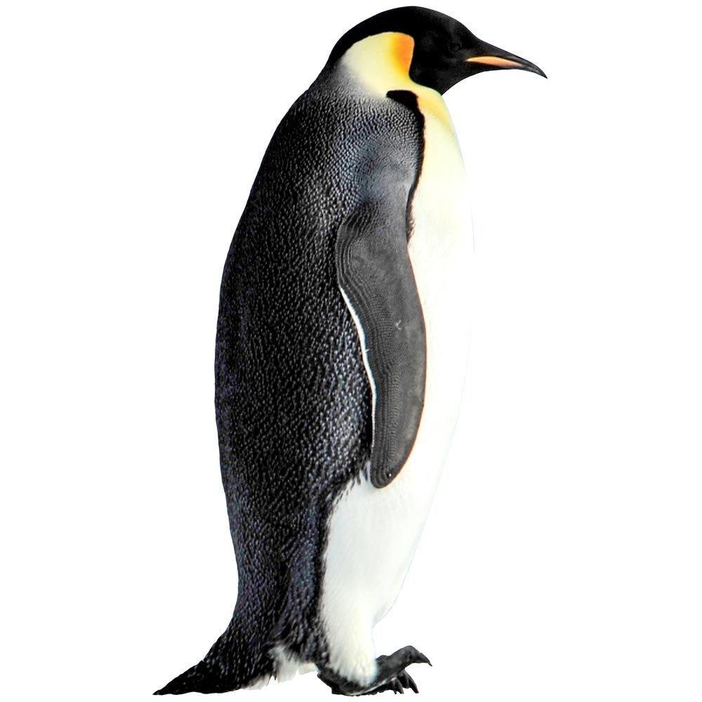 Vitrophanie pingouin  gauche - 39 x 68 cm