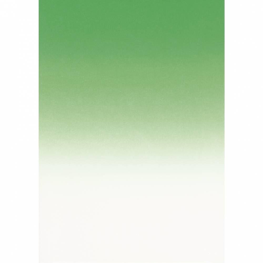 Papier de communication a4 175g 50 feuilles dégradé recto vert émeraude