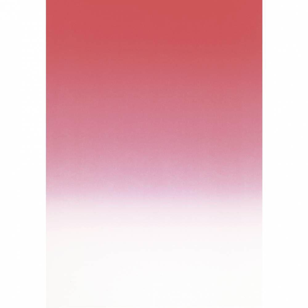 Papier de communication a4 80g 250 feuilles dégradé recto verso rouge