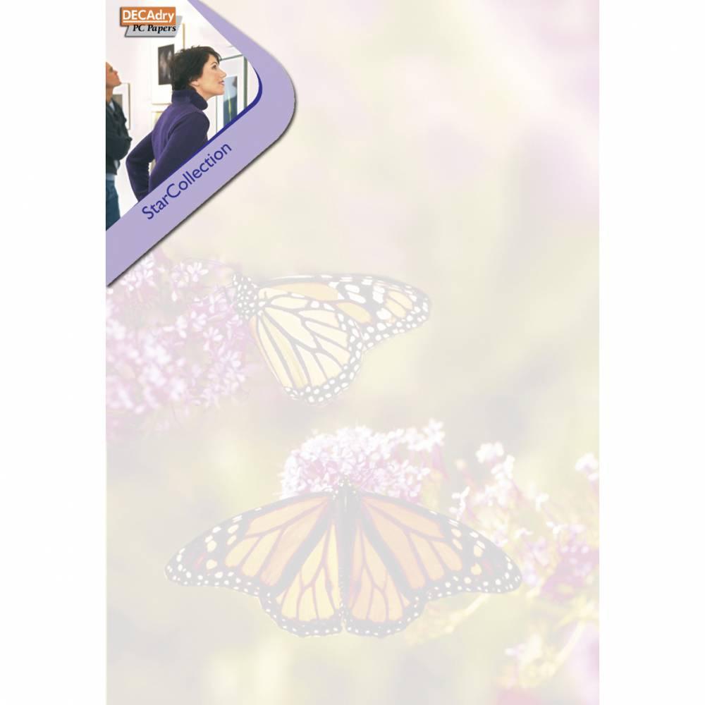 Pack 100 feuilles illustrées jardin des papillonsa4 (photo)