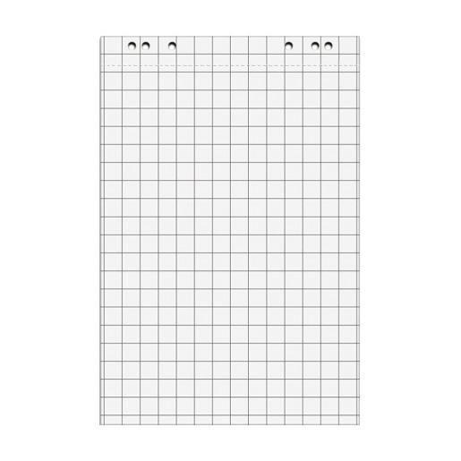Pack de 5 bloc 20 feuilles de conférence 67,5x98 cm quadrillée blanc (photo)