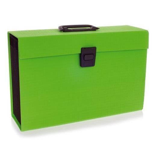 Joy Boîtes Trieur 19 compartiments Vert
