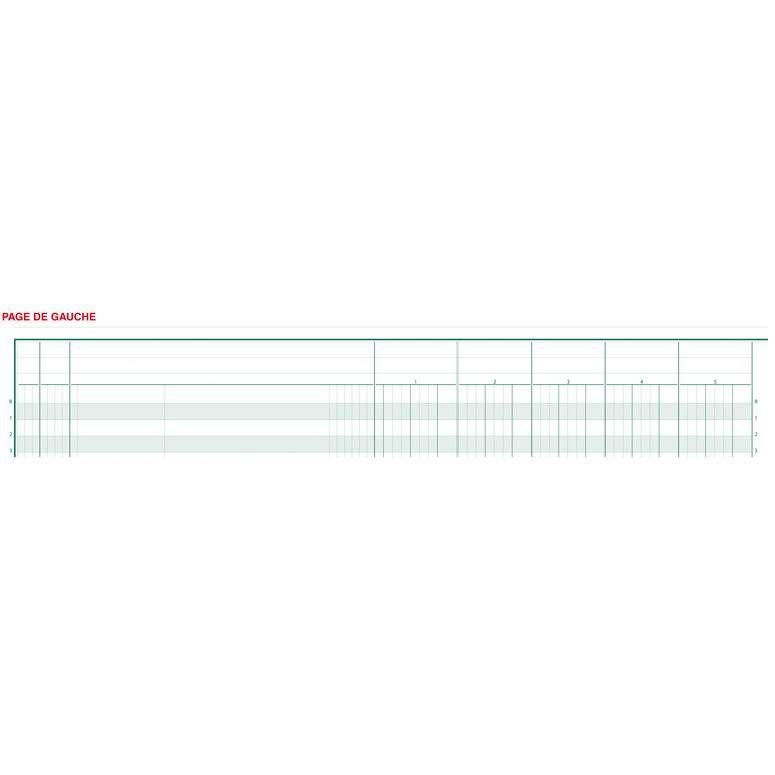 Piqûre 27x32 15 colonnes sur 2 page 31 lignes 80pages