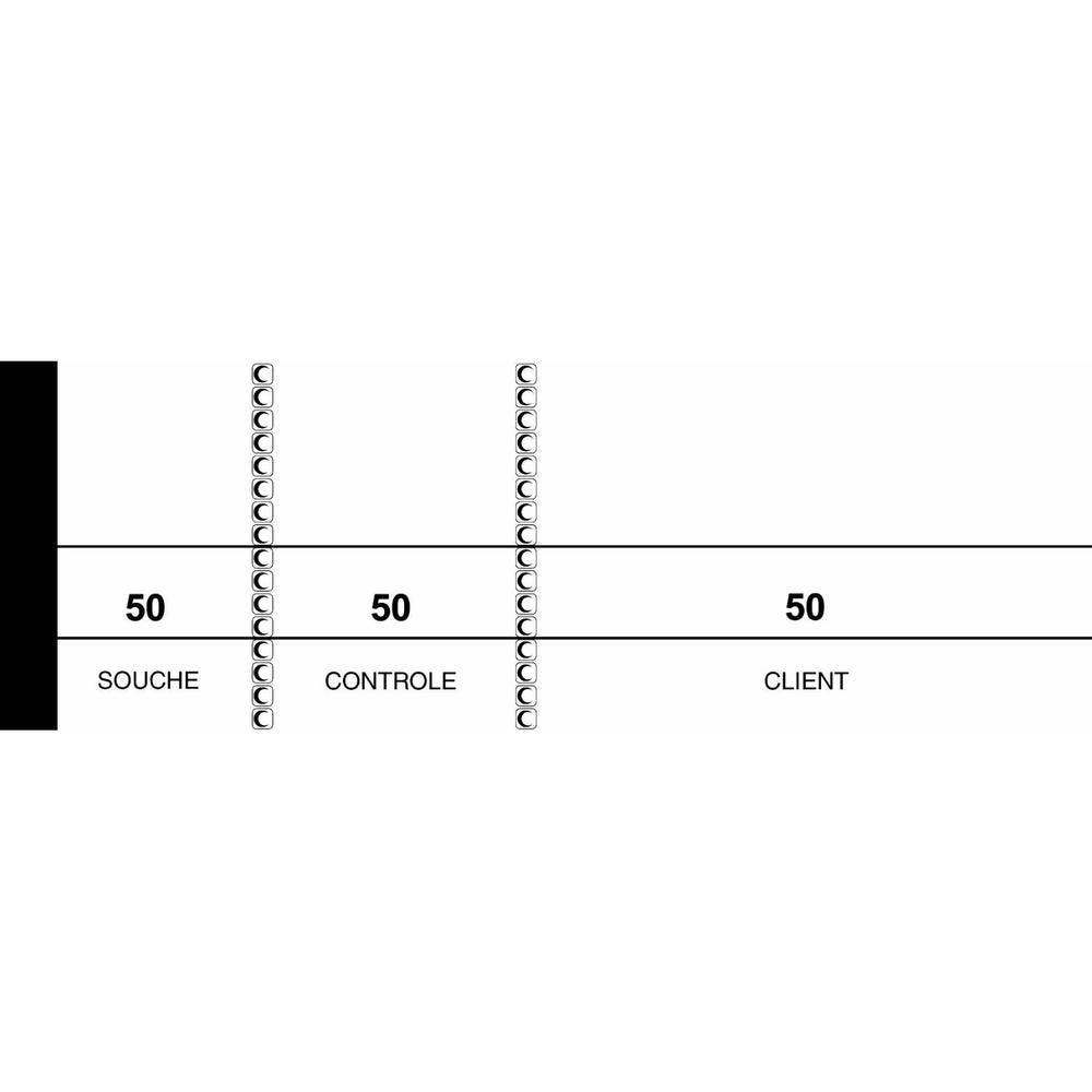 BLOCS PASSE PARTOUT BLANC 50 X 150 - par lot de 10