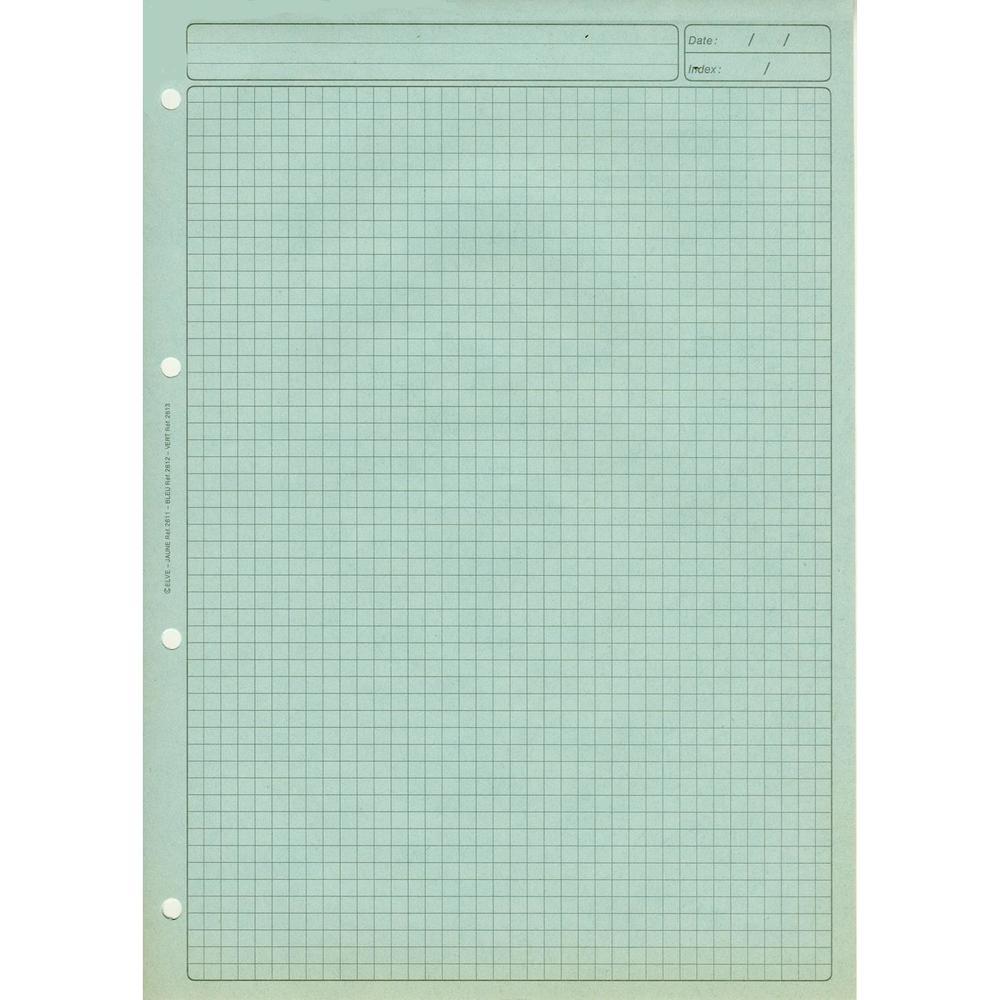 BLOC AUDIT quadrillé 5/5 avec EN-TETE R×V× 297X210 80 Papier BLEU