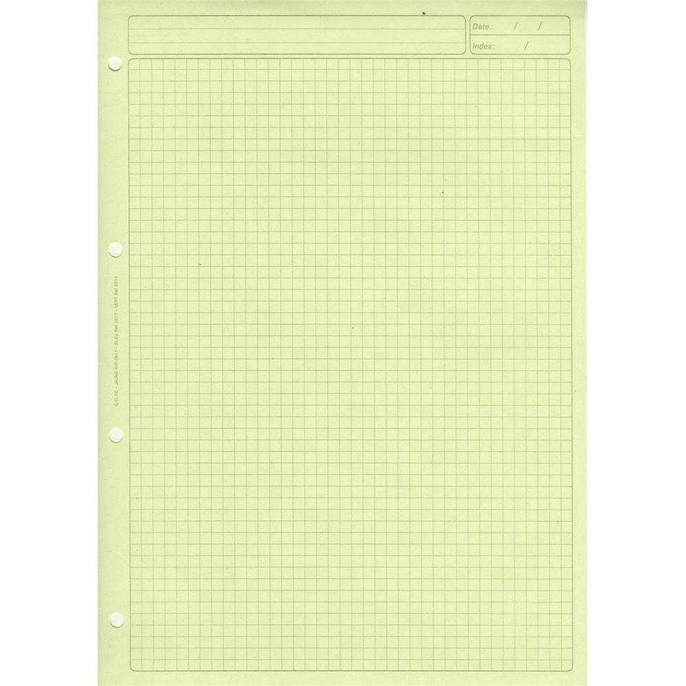 BLOC AUDIT quadrillé 5/5 EN-TETE R×V× 297X210 80 Papier. VERT