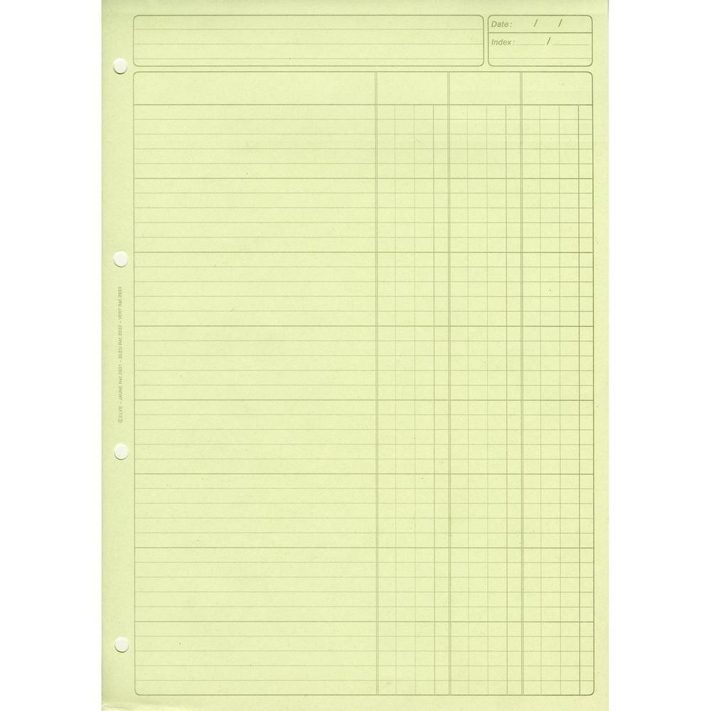 Bloc audit 3 colonnes + en-tête 297 x 210 cm 80 pages Vert