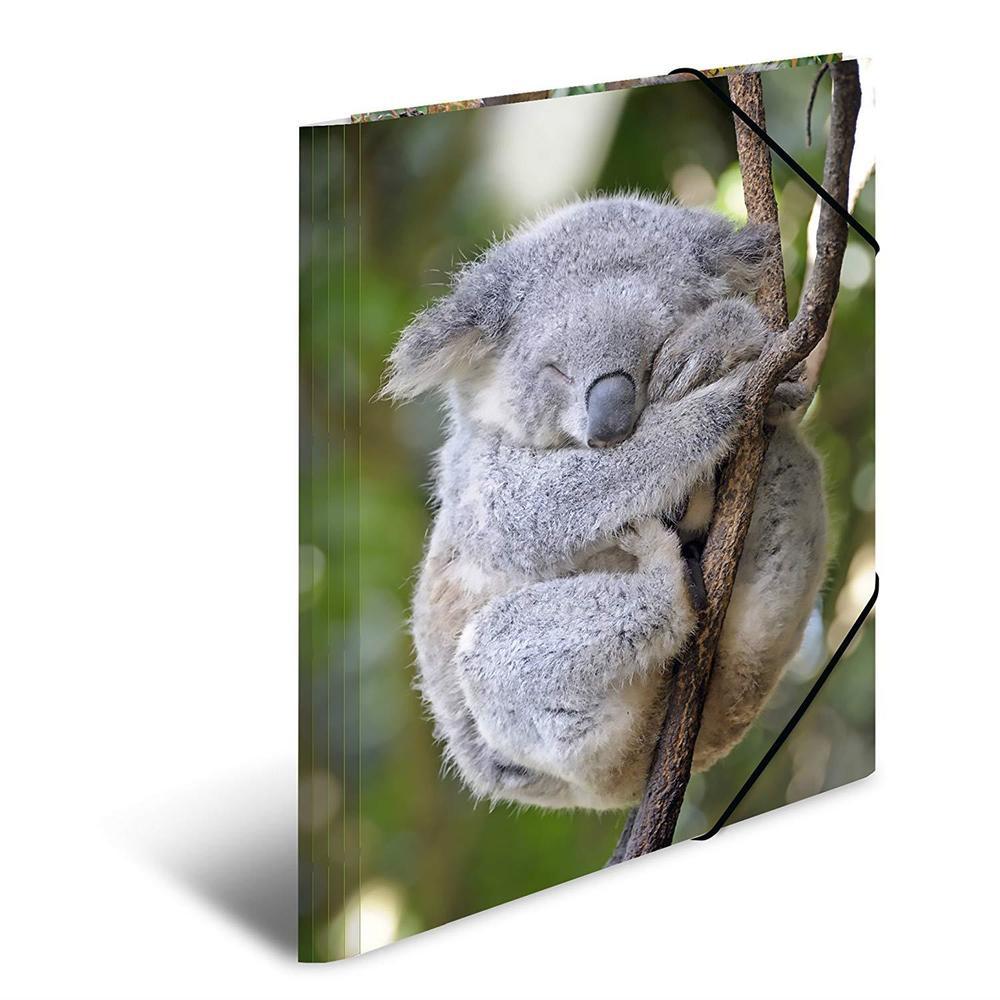 Chemise à élastiques 'koala', PP Glossy, A3