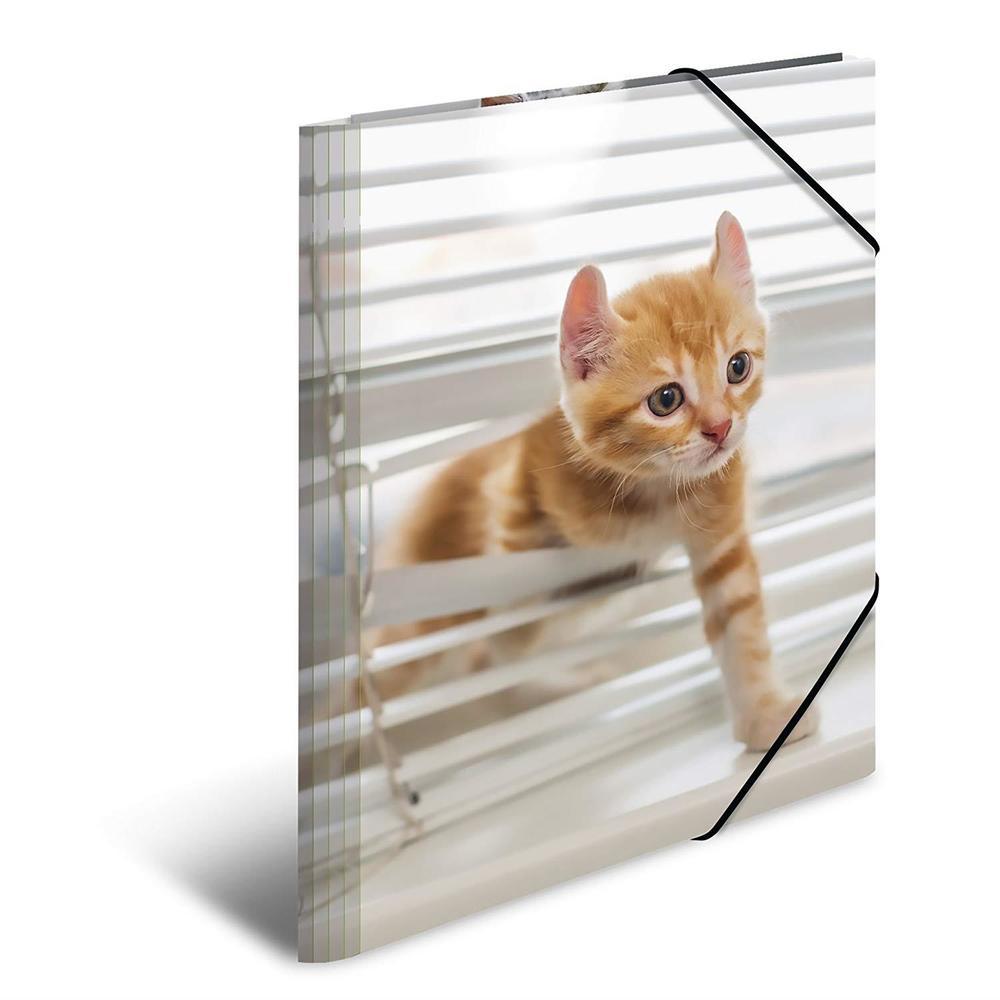 Chemise à élastiques 'chats', PP Glossy, A3